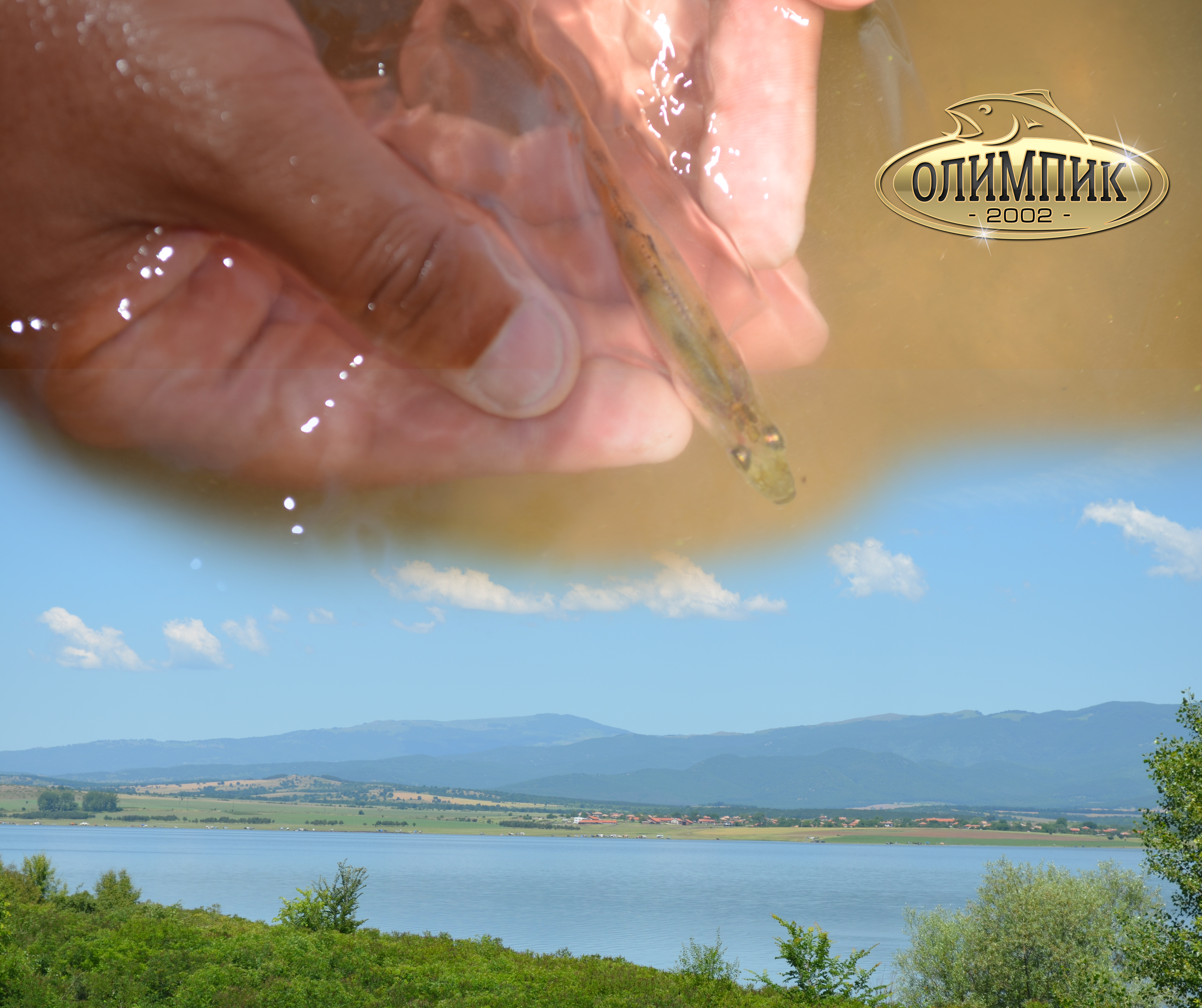 Кампания за пролетно зарибяване с бяла риба на яз. Пясъчник 2017