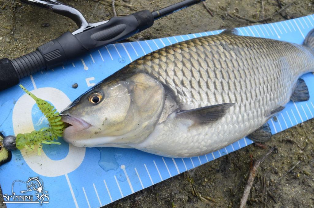 "Преди ""короната"" – риболовни излети през март 2020"